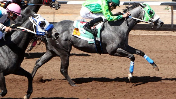Running Dragon is one of the top quarter horses at