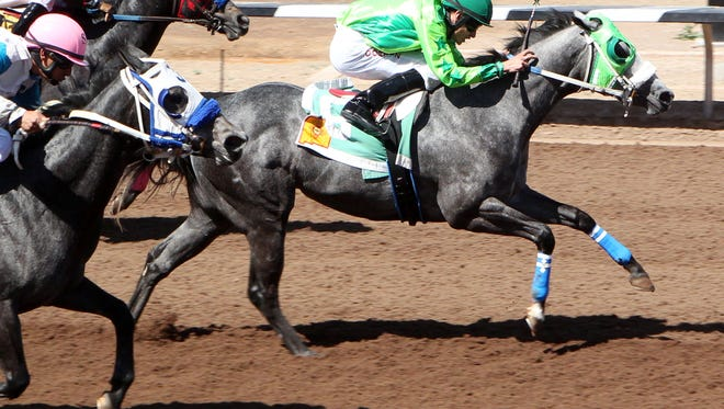 Running Dragon is one of the top quarter horses at Sunland Park Racetrack & Casino.
