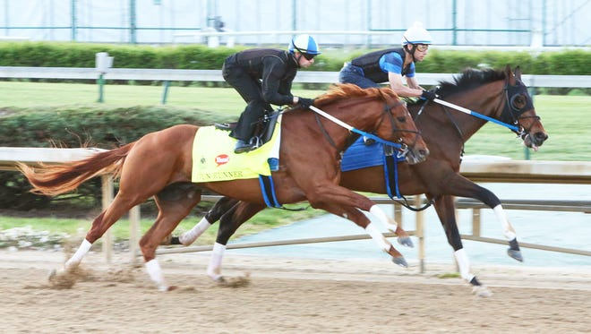 Gun Runner, outside, worked in company Monday with Gold Hawk at Churchill Downs.