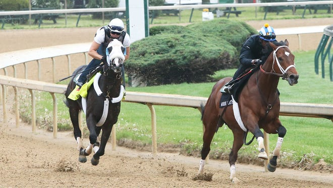 Tom's Ready, left, works out Saturday at Churchill Downs.