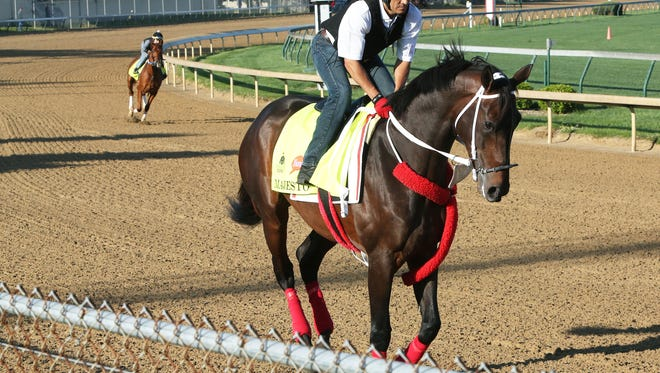 Florida Derby runner-up Majesto trains at Churchill Downs.