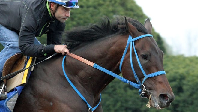 Laoban works out at Keeneland.