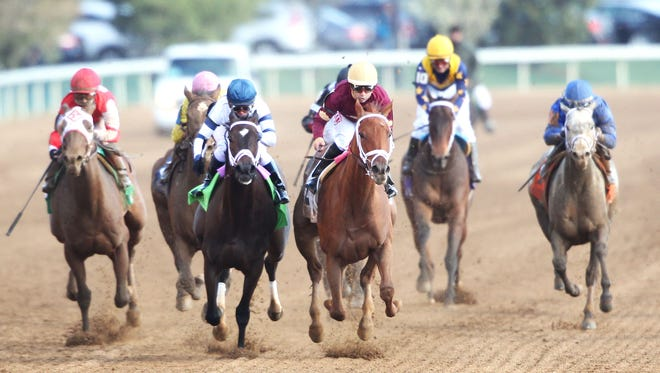 Sheer Drama, center, topped a loaded field last month in Keeneland's Grade I Madison.
