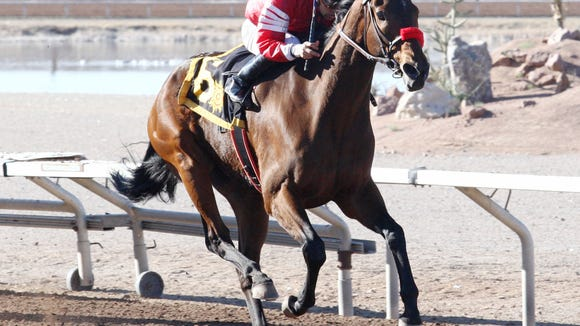 Shining Source won the New Mexico State University Stakes race on Saturday at Sunland Park Racetrack & Casino.