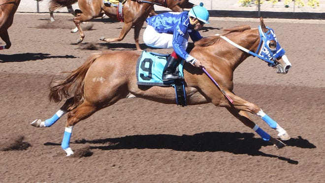 Suenos Dineros was the top qualifier for the West Texas Futurity on Friday at Sunland Park Racetrack & Casino.