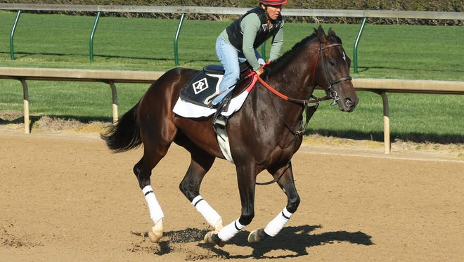 Rider Tammy Fox gallops J Boys Echo Wednesday at Churchill Downs in Louisville.