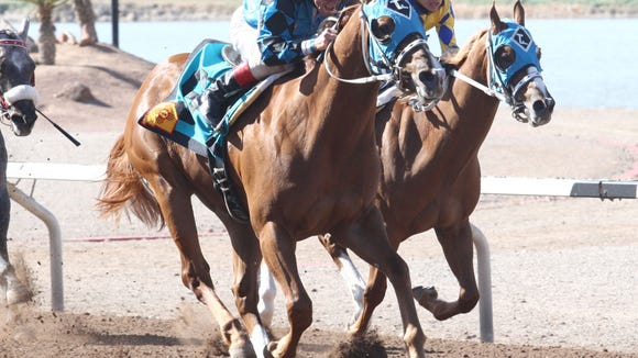 On the Low Down won the Copper Top Futurity  at Sunland