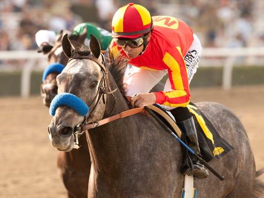 Midnight Hawk wins Sham Stakes