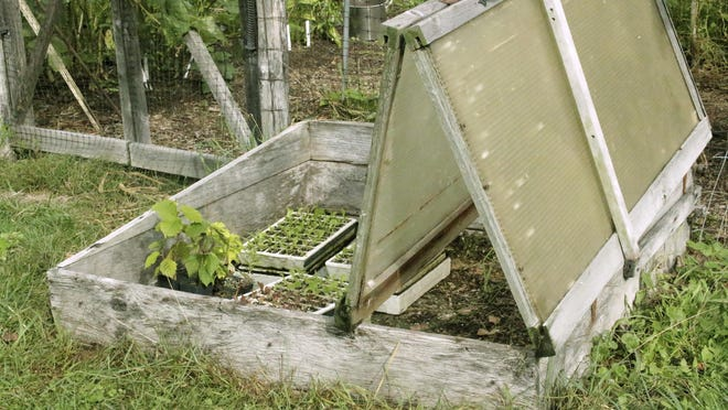 Seedlings can stay warm even in cold weather when the bifold cover of this coldframe is closed to capture and hold the sun's warmth.
