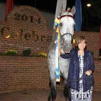 Carole Baxter poses with championship ribbons won by her Tennessee walking horse, Jimmer Fredette.