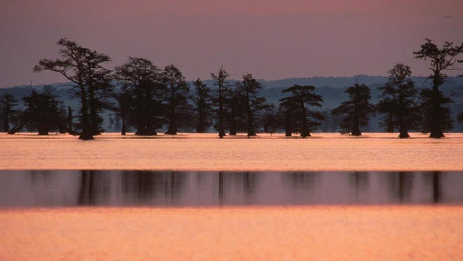 Reelfoot Lake in northwest Tennessee was created by a series of earthquakes that struck over a two-year period along the New Madrid Fault.