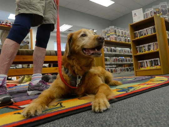 Molly checks out customers Saturday morning during the READ (Reading Education Assistance Dog) to the Dogs program at the Southwest Branch Library. Molly is retiring from the program after 10 years on the job.