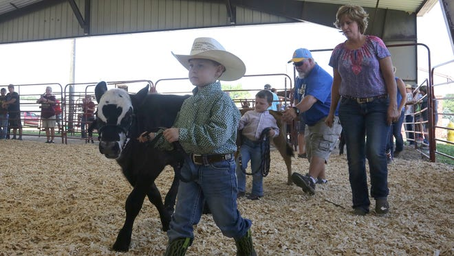 Wade Ruble leads his bucket calf into the ring for the open class for children of kindergarten age or younger on July 28 at the Warren County Fair.
