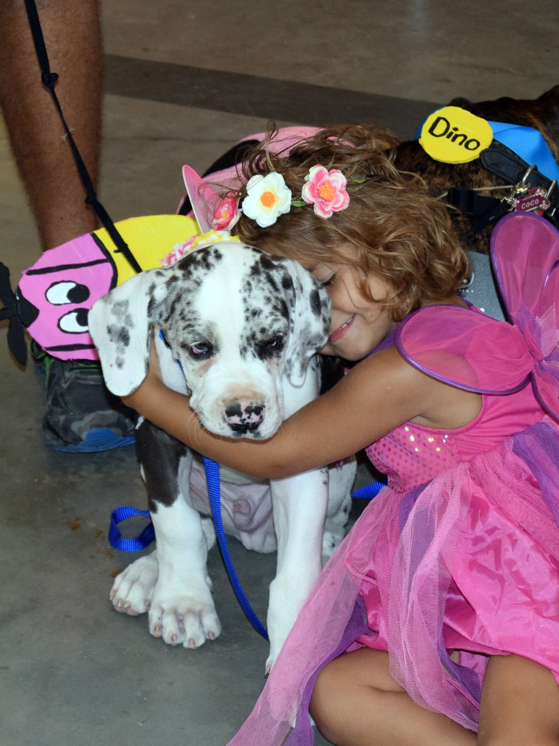 A flower princess loves on a puppy during an annual