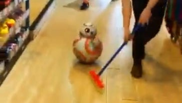 Local toy store re-enacts curling with a Star Wars themed Olympic video, went viral