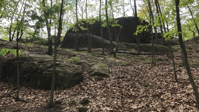 Rifle Camp Park is mostly hiking trails. Passaic County is considering a plan to create a disc golf course there.