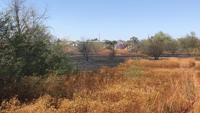 Wind is believed to be the main contender for starting a brush fire in Phoenix at 14th Avenue and Rose Garden Lane this afternoon.