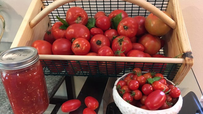 Get a taste of some of the best tomatoes grown in the Iowa City area at the Johnson County Master Gardeners' tomato tasting party at Plum Grove.