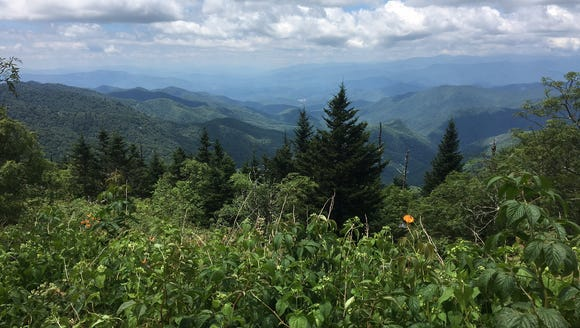 Access to Waterrock Knob on the Blue Ridge Parkway