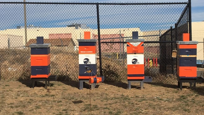 This Thursday, Nov. 16, 2017, photograph, shows four hives on the property of the Denver Broncos NFL football headquarters in Englewood, Colo. It is believed that the Broncos are the first professional sports team to serve as beehive hosts.