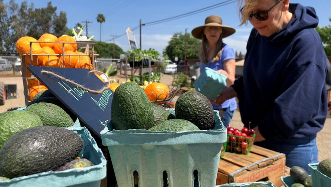 Customers pick out produce at Mustard Seed Acre in Exeter.