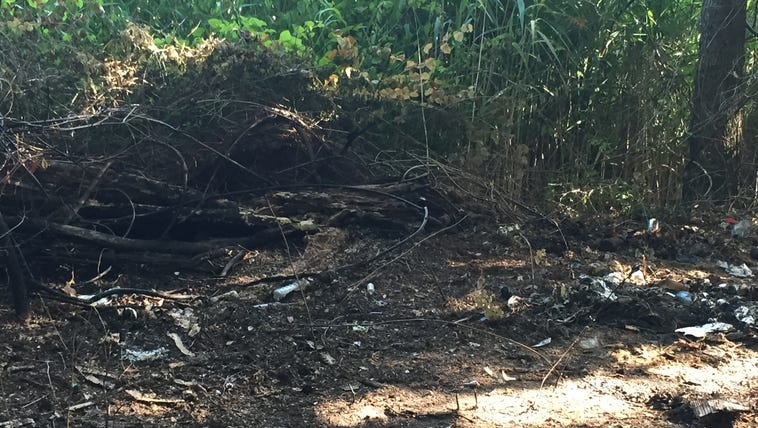 The location where a dog was burned alive in Virginia
