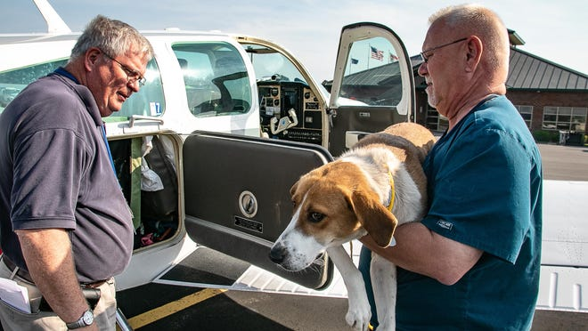 Pilot Don Ingraham, at left, watches as Craven County's Shelter director Tommy Bell brings Lorraine, a Walker hound, to his plane.