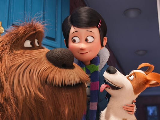 Pets box office