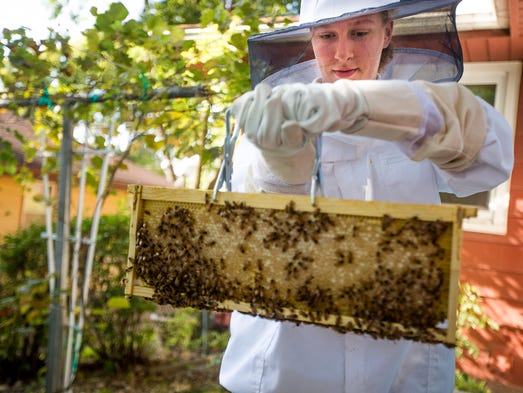 Clare Heinrich of Urbandale, 17, checks on her beehive