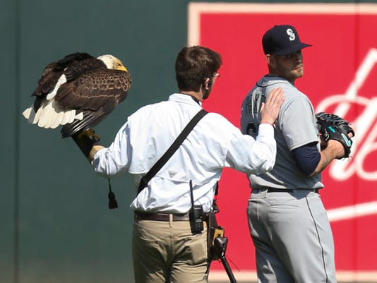 james paxton eagle