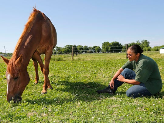Jamie Showers looks on as Little Bit, a 6-year-old female, grazes on grass and clover at Indiana Horse Rescue Central, 916 Prairie Ave., Frankfort. The horse, which was rescued from a Tippecanoe County farm in an emaciated state, is doing well.