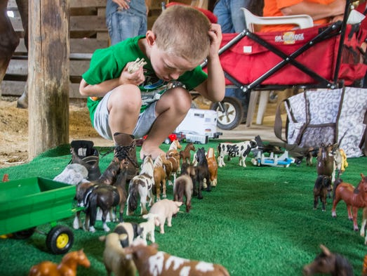 Matthew Dunlap, age 4, figures the best way to arrange his county fair parade in the draft horse barn Tuesday morning. His favorite critters are the two horses pulling the green wagon with electrical tape harnesses.