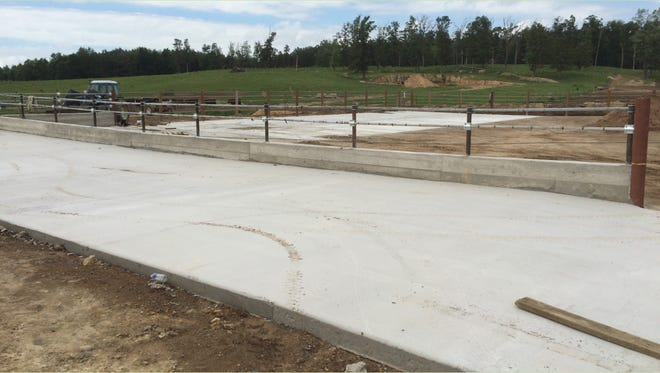 Concrete steer yard with fence line feeding.
