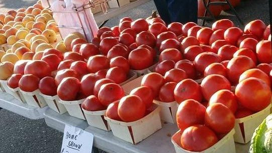 The Madison Farmers Market will remain at the corner of Treat Street and U.S. 223 after ProMedica and farmers market organizers agreed to a reduced rent price. The market is every Saturday from May through October.