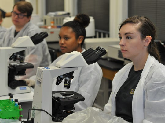 Alexandrai Senior High School graduate Chyna Sical (left) and Buckeye High School graduate Destini Kirkland spend time in the lab Thursday at the downtown campus of Louisiana State University of Alexandria. May graduates and high school students spent four days there learning about medical careers through the M.A.S.H. program and earned college credit.
