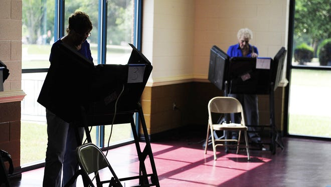 People are voting at the Williamson County Recreation Center in Franklin on election day Aug. 7, 2014.