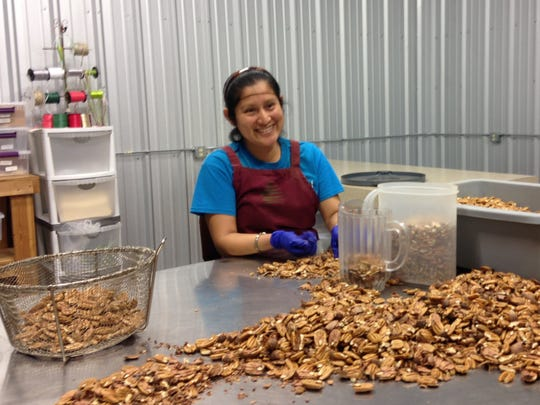 Sylvia Sanchez spends her days far from the stream of customers at Valley Pecans in Chillicothe, but it is the neatly shelled pecans Sanchez prepares that are the biggest sellers in the eclectic business, where travelers can get anything from lunch to toys to home decor with their nut purchases.