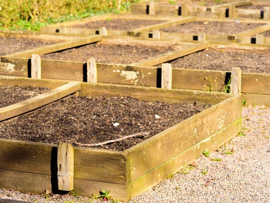 Raised garden beds can be cleared out for spring planting.