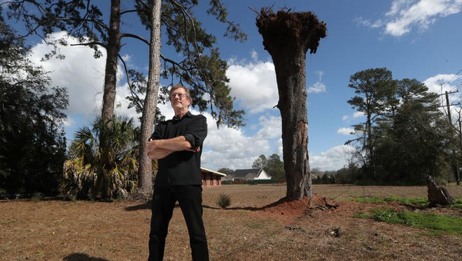 Karl Knowles stands in his front yard yard, where he has taken to replanting an oak tree upside down after the city sent notice that the fallen tree would have to be removed.