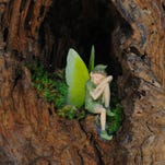 On Saturday, Rockledge Gardens will host its first-ever Fairy Garden Festival for grownups and children. If you have a fairy costume, feel free to wear it there.
