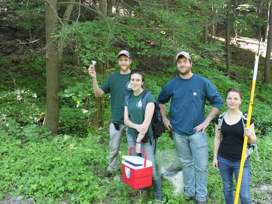 Finger Lakes Land Trust and Cornell University have partnered to combat the hemlock wooly adelgid. The invasive pest threatens to kill many hemlock trees.