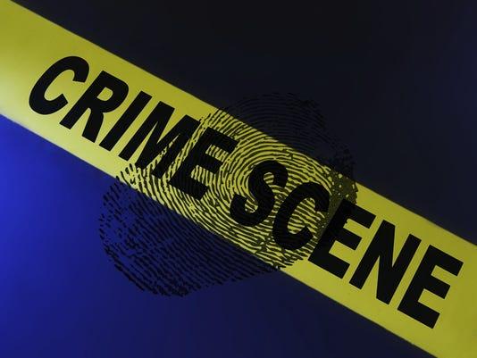 LHlogo crime