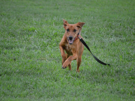 Mia loves to run. Please mark your calendar for Saturday,