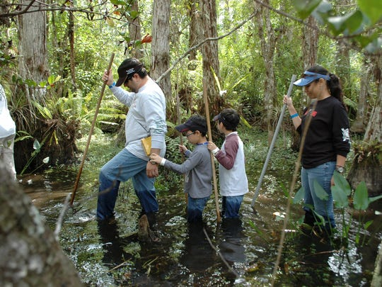 Joel Greiff, left, goes on a swamp walk with his family