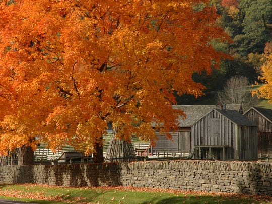 Fall foliage in Cooperstown.