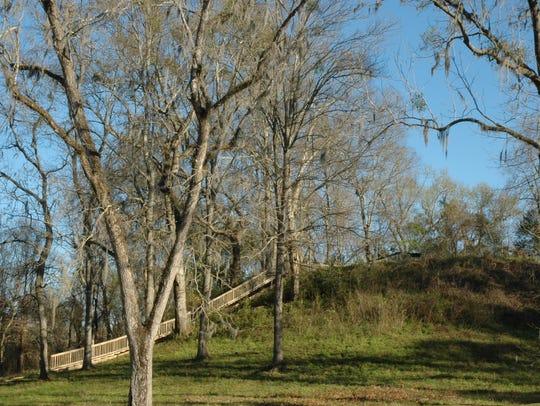 Steps leading up to Mound 3 at Lake Jackson Mounds