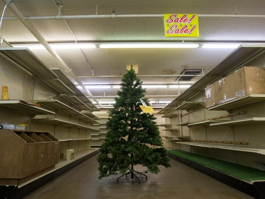 A lone artificial Christmas tree is seen inside Paul's