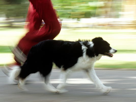 Man and dog running,side view,low section (blurred motion)
