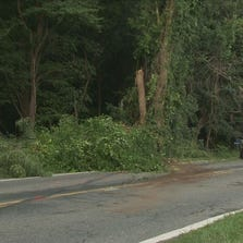 A man was killed after his car struck a tree in Accokeek, Md.