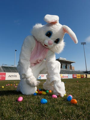 The Easter Bunny lays out eggs in preparation for BoulderBird's Egg Hunt at Provident Bank Park in Pomona on Saturday, March 26, 2016.